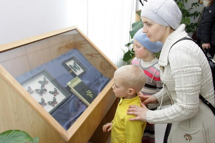 Выставка бабочек и экзотических насекомых